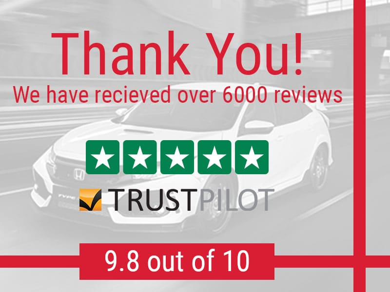 Over 6000 Reviews! Thank You!