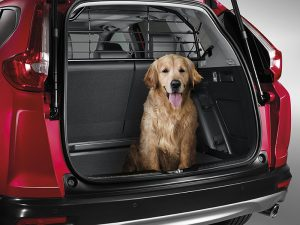 Genuine Honda CR-V Dog Guard 2019 Onwards