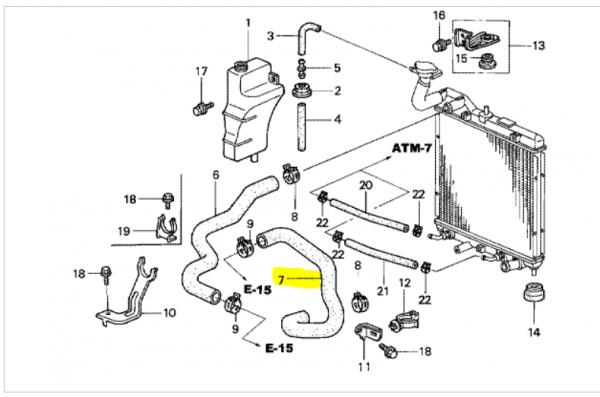 Genuine Honda Jazz Lower Radiator Hose 2002-2008